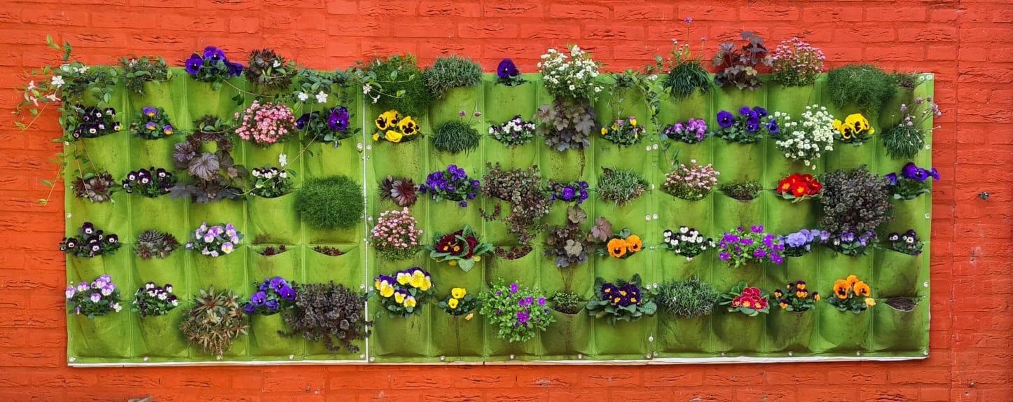 Verduurzaam je tuin of balkon met deze tips