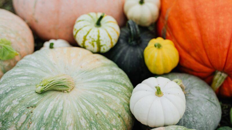 Duurzaam eten met de seizoensgroenten van oktober